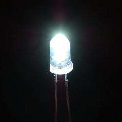 LED White Clear 5mm / White Light Emitting Diode